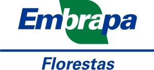 e_workshop_florestal_1851